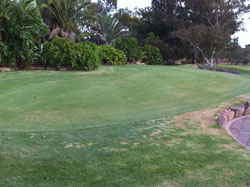 Practice - Putting Green » Click to zoom ->